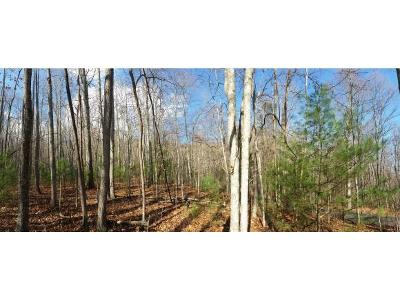 Butler Residential Lots & Land For Sale: Lot 30 Bear Ridge Drive