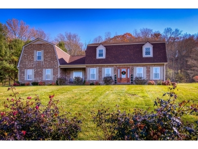 Bristol Single Family Home For Sale: 16650 Old Jonesboro Road