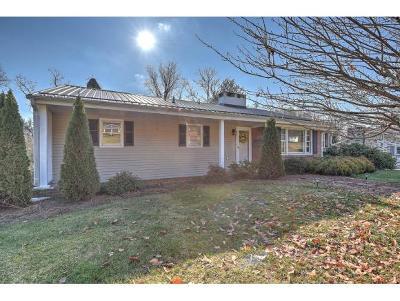 Bristol Single Family Home For Sale: 403 Knob Hill Dr