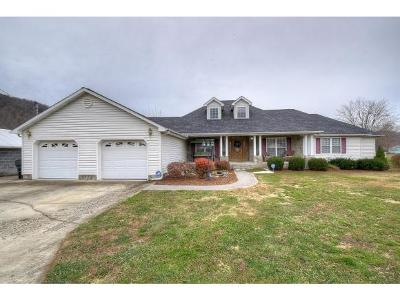 Elizabethton Single Family Home For Sale: 128 Starlight