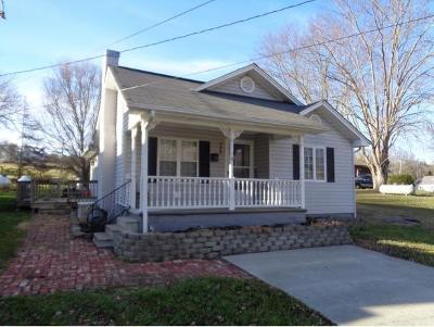 Mountain City Single Family Home For Sale: 226 Shoun St.