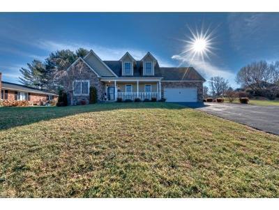 Bristol Single Family Home For Sale: 6128 Old Jonesboro Rd