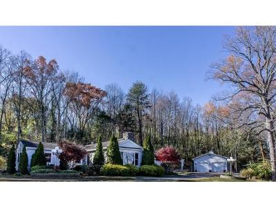 Greeneville Single Family Home For Sale: 46 Vista St.