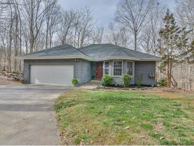 Unicoi Single Family Home For Sale: 113 Fairway Point