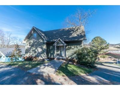 Piney Flats Single Family Home For Sale: 778 Summer Sound