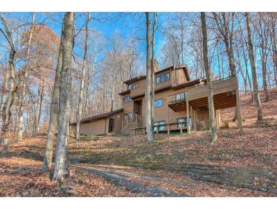 Blountville Single Family Home For Sale: 690 Buttermilk Road