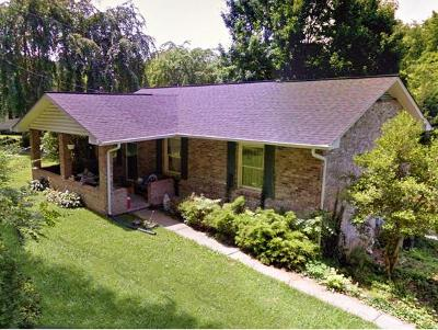 Kingsport Single Family Home For Sale: 455 Fleming Road