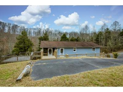 Piney Flats Single Family Home For Sale: 384 Hideaway Farm Rd