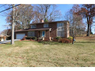 Kingsport Single Family Home For Sale: 905 Meadow Lane