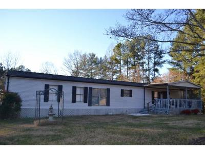 Kingsport Single Family Home For Sale: 331 Hawkins Lane