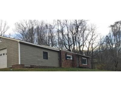 Bristol VA Single Family Home For Sale: $124,900
