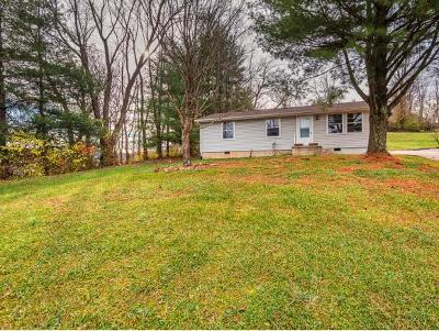 Bluff City Single Family Home For Sale: 1236 White Top Rd