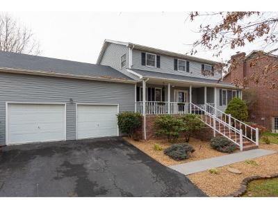 Bluff City Single Family Home For Sale: 273 Apple Ridge