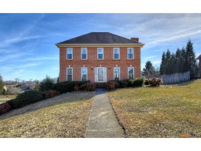 Kingsport Single Family Home For Sale: 233 Ascot Drive