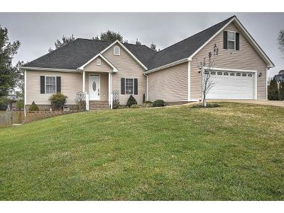 Bristol Single Family Home For Sale: 4061 Old Jonesboro Rd