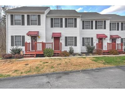 Bristol TN Condo/Townhouse For Sale: $92,000