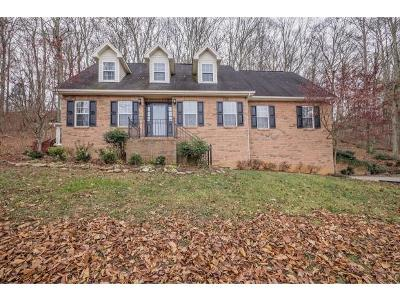 Kingsport Single Family Home For Sale: 283 Ascot Dr.
