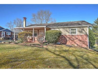 Kingsport Single Family Home For Sale: 229 Lakecrest Drive