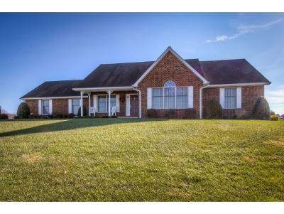 Bristol Single Family Home For Sale: 13434 Sinking Creek Road