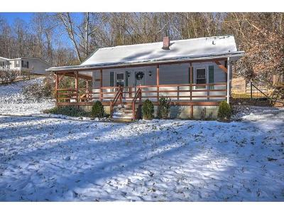 Unicoi Single Family Home For Sale: 4853 Unicoi Road