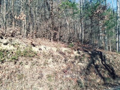 Greene County Residential Lots & Land For Sale: Stone Mountain