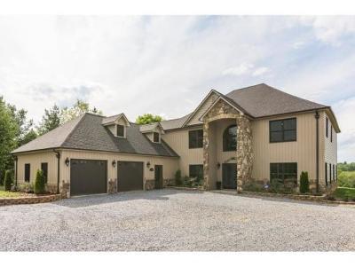 Elizabethton Single Family Home For Sale: 134 County Acres Drive