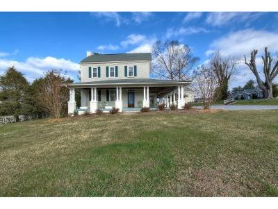 Johnson City Single Family Home For Sale: 1902 Knob Creek Road