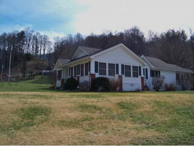 Roan Mountain Single Family Home For Sale: 172 Morgan Branch Road