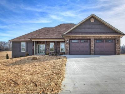Jonesborough Single Family Home For Sale: 1296 Harmony Rd