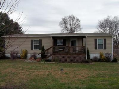Blountville Single Family Home For Sale: 670 Big Hollow Rd