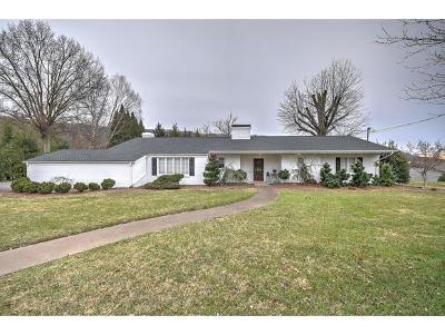Kingsport Single Family Home For Sale: 2029 Westwind Drive