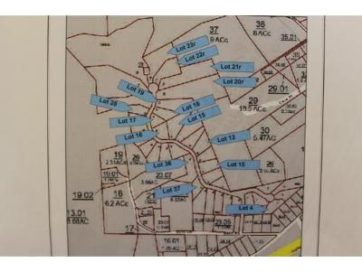 Residential Lots & Land For Sale: TBD Madeline Lane Lot 10