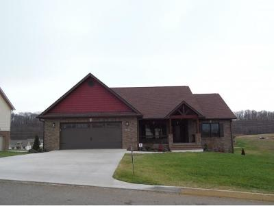 Gray Single Family Home For Sale: 1273 Little Shadden Way