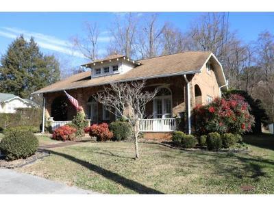 Bristol VA Single Family Home For Sale: $228,900
