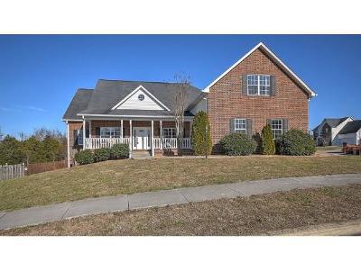 Johnson City Single Family Home For Sale: 27 Singletree Court