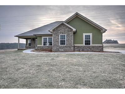 Greeneville Single Family Home For Sale: 127 Links View Drive