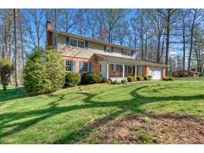 Bristol Single Family Home For Sale: 301 Robin Rd
