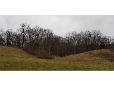 Unicoi Residential Lots & Land For Sale: TR 2 Powder Hollow Road