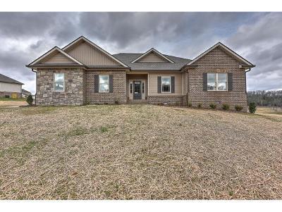 Jonesborough Single Family Home For Sale: 1393 Peaceful Drive