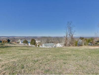 Johnson City Residential Lots & Land For Sale: 226 Sunset Ridge Ct