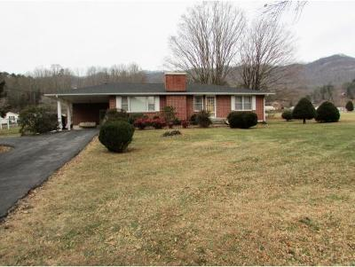 Hampton Single Family Home For Sale: 976 Rittertown Road