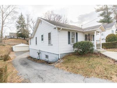 Bristol VA Single Family Home For Sale: $89,499