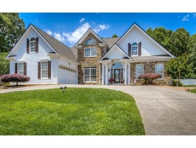 Kingsport Single Family Home For Sale: 201 Rosehaven Court