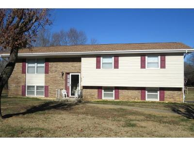 Bristol VA Single Family Home For Sale: $168,000