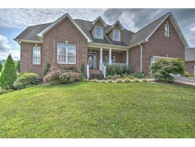 Blountville Single Family Home For Sale: 108 Sugarfield Lane
