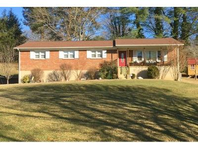 Bristol Single Family Home For Sale: 209 Jonesboro Road