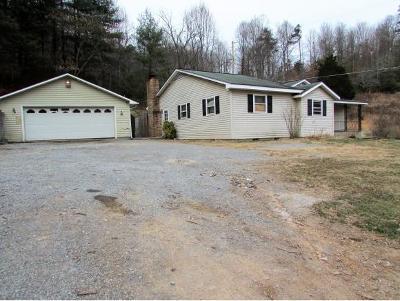 Elizabethton Single Family Home For Sale: 289 Chambers