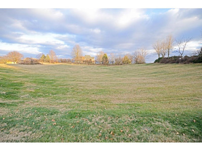 Greene County Residential Lots & Land For Sale: Magnolia Dr