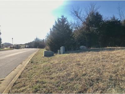 Johnson City Residential Lots & Land For Sale: 122 Lake Harbor