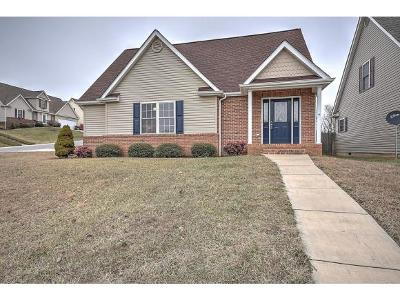 Bristol Single Family Home For Sale: 803 Trammell Rd.